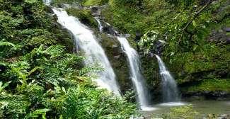 Een van de vele watervallen die op de Hawaiiaanse eilanden te vinden zijn.