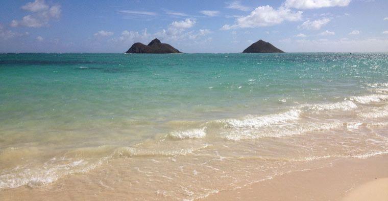 Waikiki Oahu Bij Exit Reizen