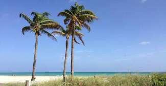 Florida heeft veel mooie stranden te bieden, vooral Miami Beach is erg populair.