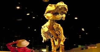 """Royal Tyrell Museum in Drumheller """"dinosaurus hoofdstad"""""""