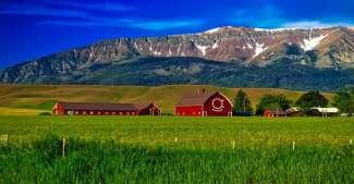 Oregon ligt onder de staat Washington in het noordwesten van Amerika. In Oregon bevinden zich bossen, bergen, boerderijen en stranden.