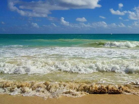 Beste online dating site in Hawaii