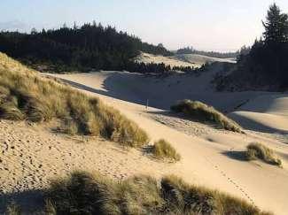 De prachtige duinen in Oregon