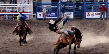 Cody - Rodeo