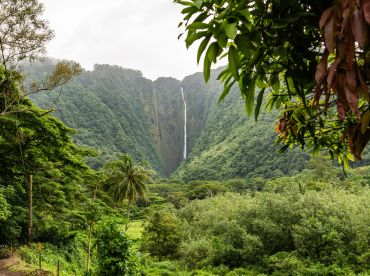 Hi'ilawe Falls, Big Island