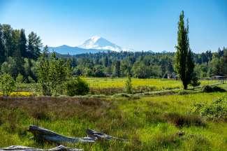 Mount Rainier National Park ligt op circa 2 uur rijden van Seattle.