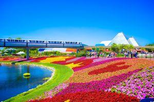 Orlando attractieparken