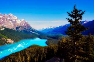 Peyto Lake ligt in Banff National Park.