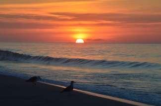 Cape Cod biedt ongerepte natuur en prachtige zandstranden.