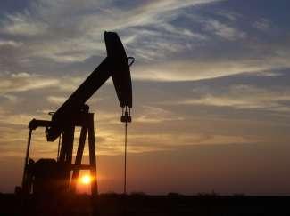 Een jaknikker helpt om de olie uit de grond te pompen en is volop vertegenwoordigd in  Texas.
