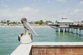 Der Pier von Fort Myers.