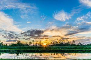 Activiteiten Everglades