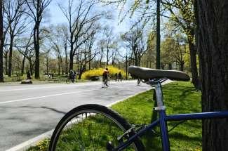 Central Park in Manhattan is een van de bekendste parken van de Verenigde Staten.