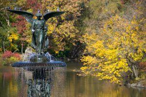 Bethesda Fontein in Central Park