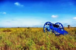 Palo Alto Battlefield National Historic Site