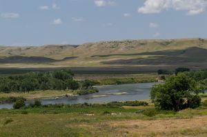 Bighorn Montana