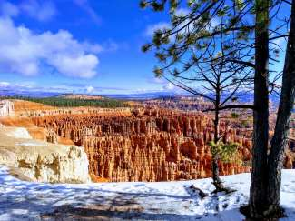 Bryce Canyon in is de winter erg prachtig en dan kunt er ook een bezoek aan brengen. Er loopt een weg langs de Bryce Canyon en deze wordt sneeuwvrij gehouden.