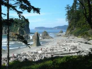 Ruwe kustlijn en schilderachtige stranden in Olympic National Park in Washington, VS.