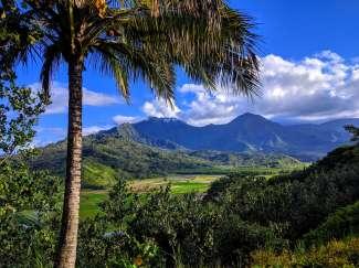 Kauai wird wegen der reichen Flora und Fauna auch Garden Isle genannt.