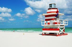 Tips Miami >>