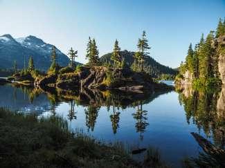 Vancouver Island heeft veel ongerepte natuur en perfecte wildlife spotting mogelijkheden.
