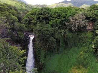 De indrukwekkende Makahiku Falls liggen op de Pipiwai Trail in Haleakala NP, nabij Hana Maui.