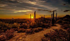 Zonsondergang Scottsdale