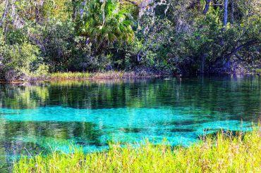 Bronnen in Florida