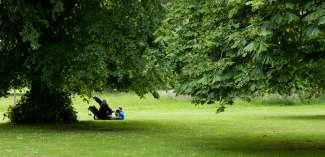 Geniet na een wandeling van de prachtige natuur met een picknick.