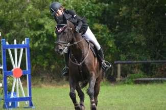 In Ocala vinden diverse paardenevenementen plaats, b.v. Springen.