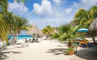Genieten van wuivende palmen op een van de prachtige stranden van Curacao.