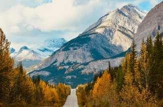 Icefield Parkway door de massieve bergketens van de Rocky Mountains  is een van de mooiste routes ter wereld.