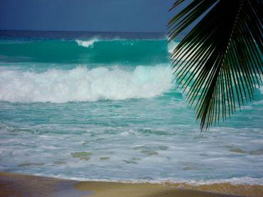 Relaxen op Barbados!