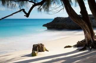 Barbados is een waar tropisch paradijs met witte stranden en turquoise zeewater.