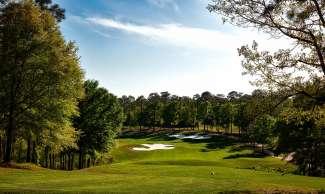 Er zijn verschillende populaire golfbanen in Mobile.