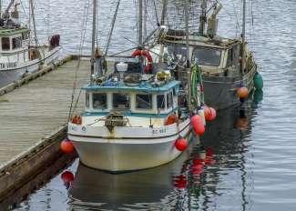 Prince Rupert is een vissersdorp zoals in een stripboek