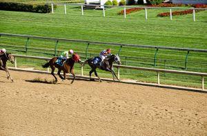 Paardenrace in Louisville