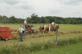 Lancaster staat bekend als Amish County, breng een bezoek aan de bevolking en ga terug in de tijd.