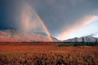 Het nationale park van Fairbanks