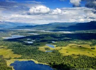 Het fantastische uitzicht op het Denali National Park