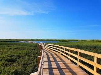 Boardwalk in het Prince Edward Island National Park.