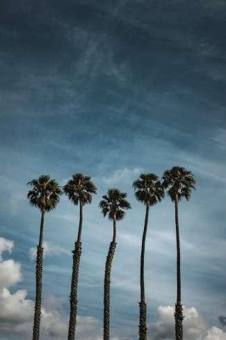 Krijg een echt vakantie gevoel in Santa Maria.