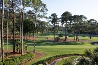 Meer dan 360 zeer goed onderhouden golfbanen, die worden gebruikt voor toernooien van wereldklasse, bevinden zich in South Carolina.