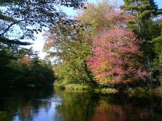 Het park in het binnenland nodigt uit tot urenlang kanoën.