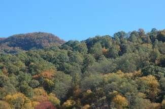 Geniet van het prachtige landschap van Asheville, b.v. tijdens een wandeling.