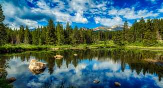 Geniet van de zeer diverse landschappen welke de omgeving te bieden heeft