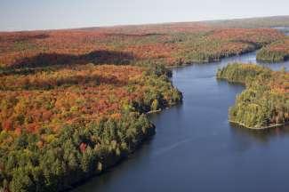 Fantastische herfstkleuren in Algonquin Provincial Park.