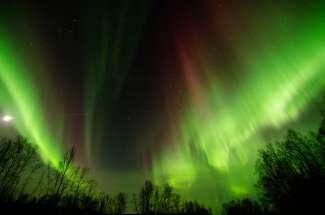 Fairbanks Aurora Borealis