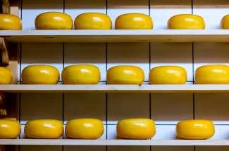 Willamette Valley Cheese maakt handgemaakte boerenkazen