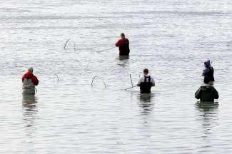 De Kenai rivier staat wereldwijd bekend om de diversiteit aan vissen.